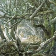 Gandalf en el Bosque Negro