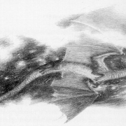Ataque de Smaug