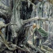 Buscando a los hobbits