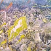 Batalla campos del pelennor