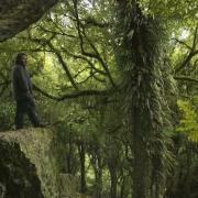 Peter Jackson en el Bosque de los Trolls