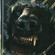 Beorn transformado en oso