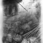 La Ciénaga de los Muertos