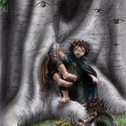 Problemas en el Bosque