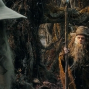 Gandalf y Radagast en Rhosgobel