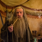 Gandalf reflexiona en la tienda de Thranduil