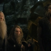 Gandalf, Radagast y Beorn