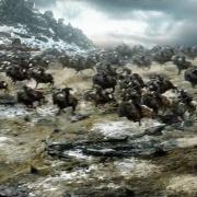 Los Enanos llegan montados en carneros