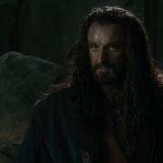 Thorin habla a su compañía