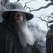 Gandalf y Radagast en los Altos Páramos
