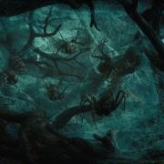 Las Arañas del Bosque Negro
