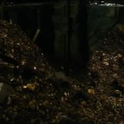 Bilbo despierta a Smaug