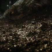 Smaug emerge del tesoro