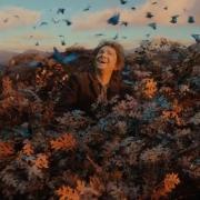 Bilbo rodeado de mariposas