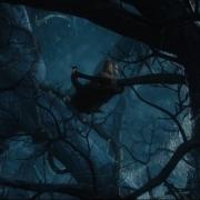 Bilbo, en apuros en el Bosque Negro