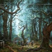 Entrando en el Bosque Negro