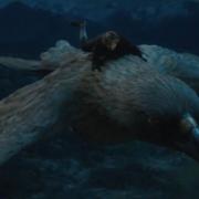 Bilbo a lomos de una de las Águilas