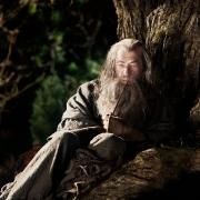 Gandalf en el Bosque de los Trolls